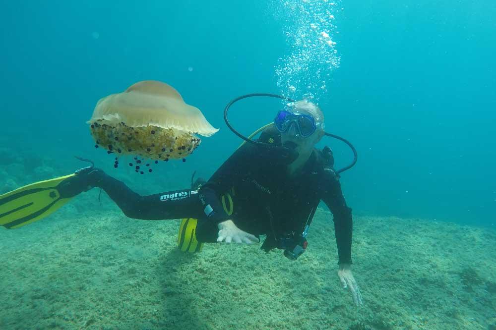 Caretta Diving Specijalnost Morska Ekologija