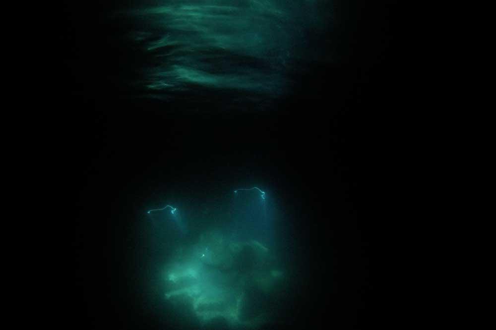 Caretta Diving Specijalnost Nocnog Ronjenja